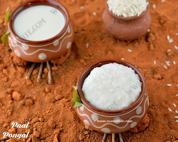 Paal Pongal Recipe | Milk Pongal Recipe