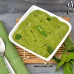 Mint Chutney Recipe 1