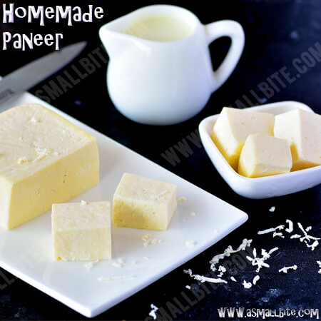 Homemade Paneer Best Holi Recipes