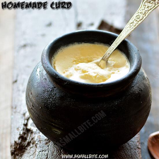Homemade Curd Recipe