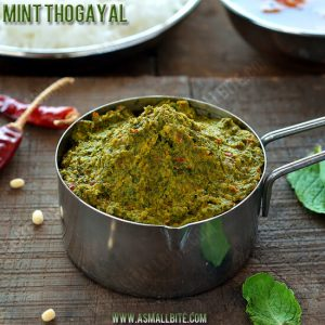 Mint Thogayal Recipe 1