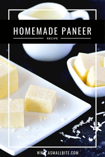 Homemade Paneer Best Holi Recipes