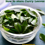 How to Store Fresh Curry Leaves
